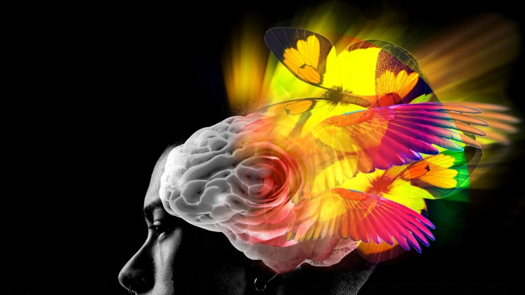 The Psychedelic Medicine Association