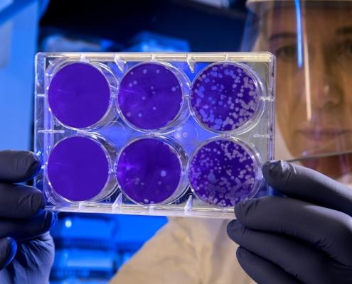Biotech Firm PsyBio Therapeutics Is Producing Psilocybin From Bacteria
