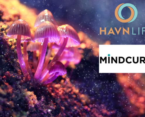 Psychedelic Companies HAVN Life Sciences, MINDCURE Health Reach Manufacturing Milestones