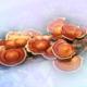 Reishi Mushrooms to treat breast cancer