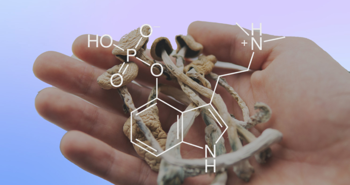 How Mindset Pharma Is Making and Defining 'Next-Generation Psychedelic Drugs'